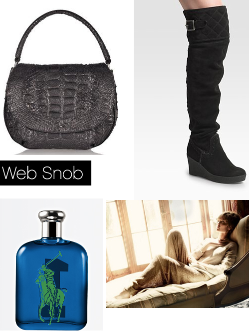 Websnob Nov12 2010