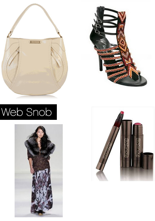 Websnob Feb25 2011