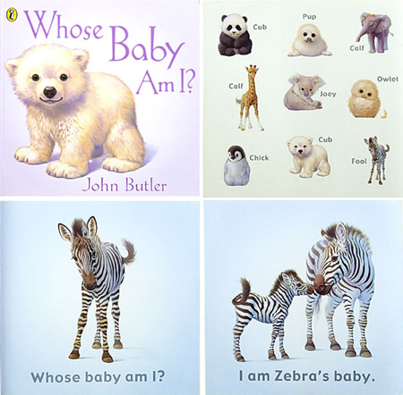 Whosebaby-Am-I-Book