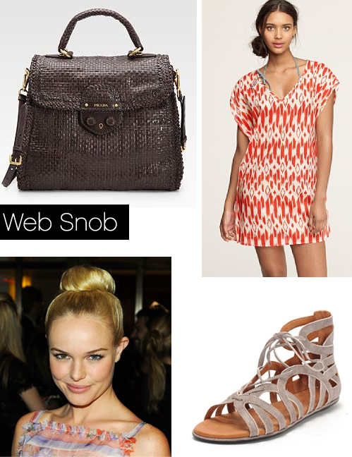 Websnob June24 2011