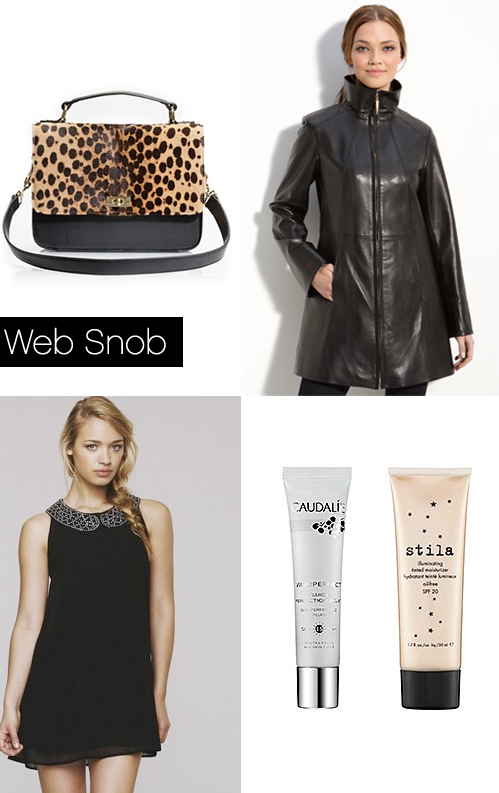 Websnob Nov11 2011