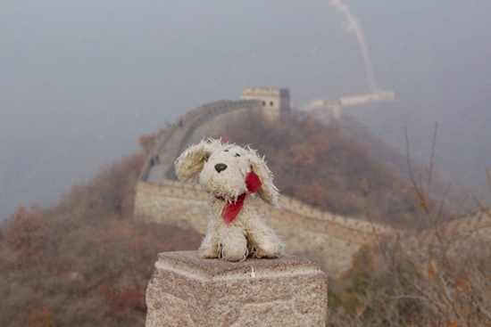 Chilidog-Greatwall