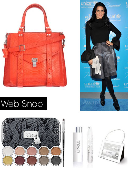 Websnob Dec9 2011