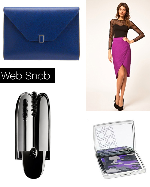Websnob Jan6 2011