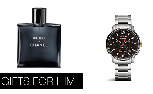 Giftguide2013-Giftsforhim